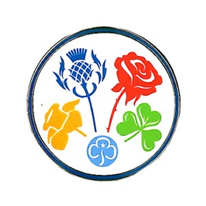 Girlguiding UK national flowers friendship metal badge