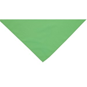 Green neckerchief scarf