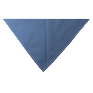 Blue neckerchief scarf