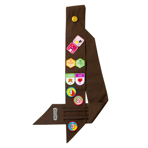 Brownies uniform badge sash wide