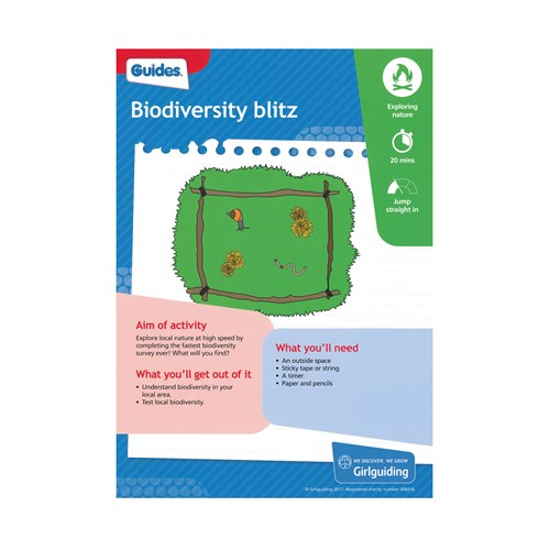 Guides Unit meeting activity Have adventures Biodiversity Blitz