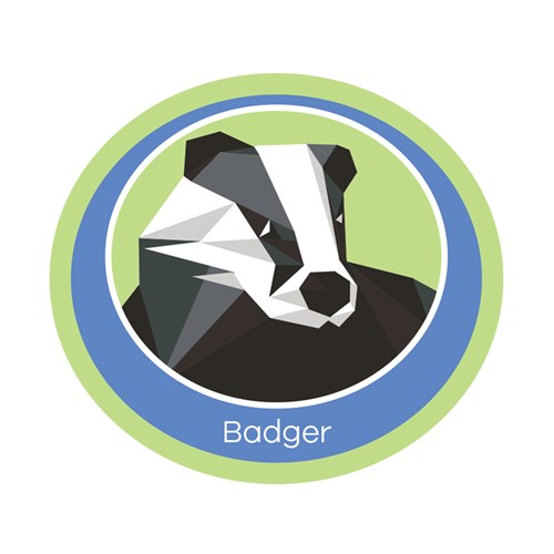 Badger emblem woven badge