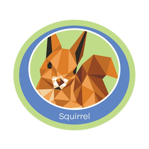 Squirrel emblem woven badge