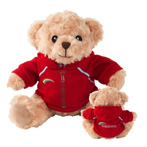 Rainbows teddy bear wearing hoodie jacket